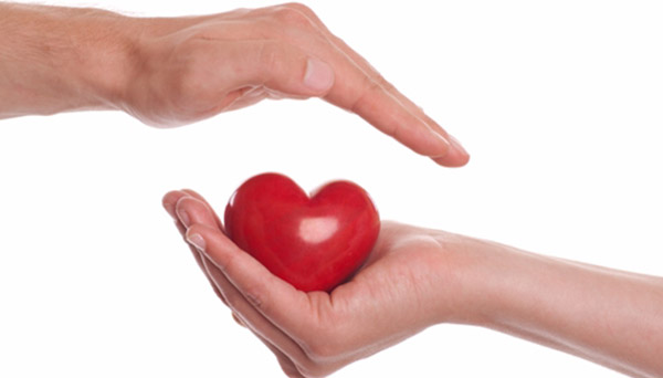 tăng cường sức khỏe tim mạch với nhân sâm
